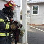 Firefighters prevent apartment fire from spreading to other units