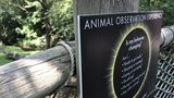Thousands watch animal behavior, total solar eclipse at Nashville Zoo