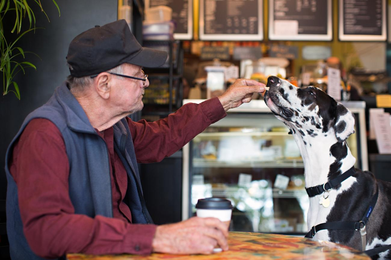 """Van the Plant Man"" is a regular at Sidewinder Coffee. He hangs out, sells plants, and feeds all the doggy patrons treats. Jack, a Great Dane, loves seeing Van the Plant Man. He estimates there are around 30 regular dogs that come into Sidewinder. ADDRESS: 4181 Hamilton Avenue (45223) / Image: Sarah Parisi Dowlin // Published: 11.7.18"