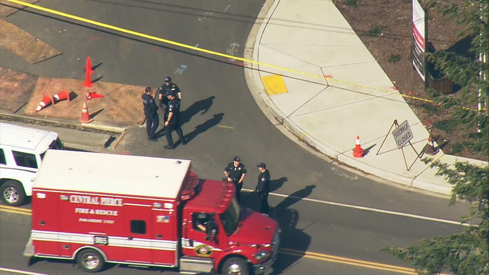 Man fatally shoots brother after fight at Spanaway