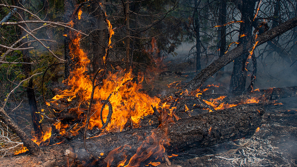 Bootleg Fire: Photos from inside the perimeter