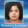 Lake Charles woman accused of deserting 4 children; 2 left in locked vehicle not running