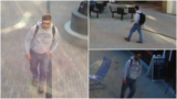 Ithaca PD seek help identifying forcible touching suspect