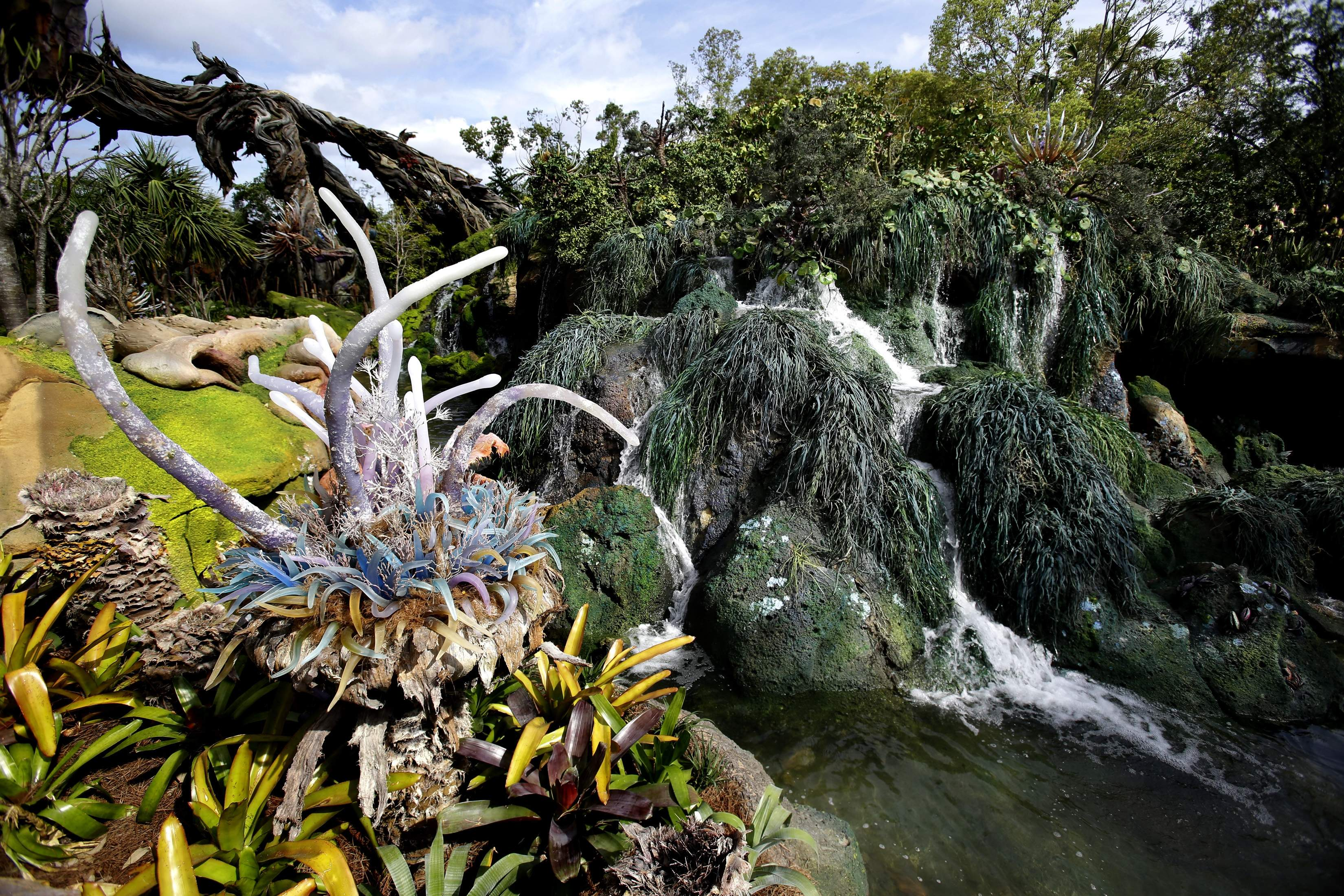 In this Saturday, April 29, 2017, photo, landscaping consisting of real Earth plant species mixed with sculpted Pandora artificial flora is surrounded by ponds and gentle waterfalls at the Pandora-World of Avatar land attraction in Disney's Animal Kingdom theme park at Walt Disney World in Lake Buena Vista, Fla. The 12-acre land, inspired by the 'Avatar' movie, opens in Florida at the end of May at Walt Disney World's Animal Kingdom. It cost a half-billion dollars. THE ASSOCIATED PRESS