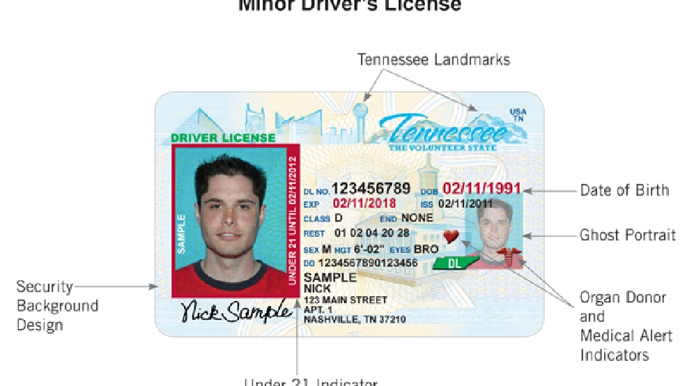 tennessee moves forward with vertical under-21 driver's licenses | wztv