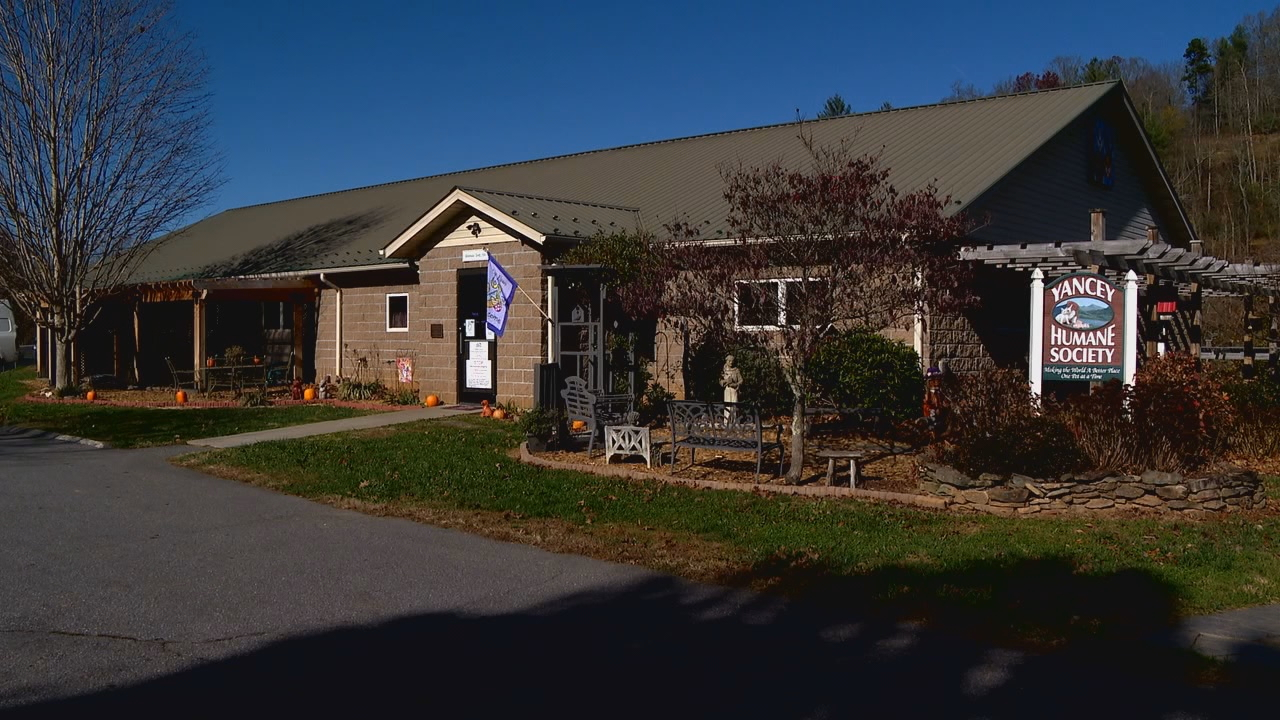 Yancey County Humane Society in November of 2020. (Photo credit: WLOS Staff)