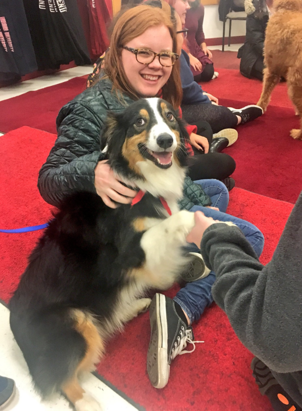 Dogs calm South Bend students before finals. // WSBT 22 Photo