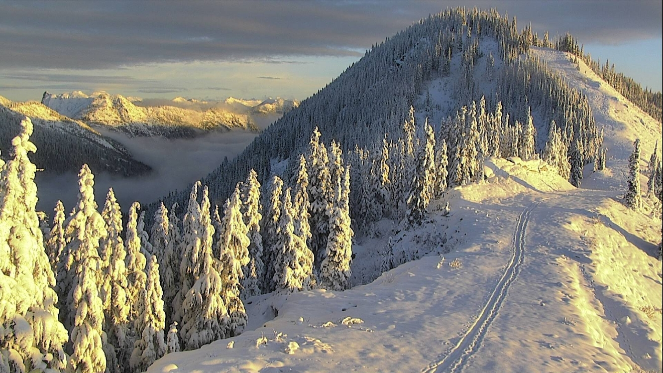 Photo courtesy: Stevens Pass Ski Resort