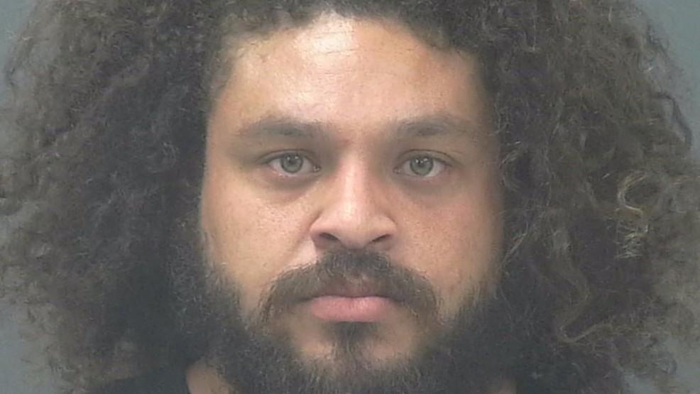 Navarre man arrested for killing bear