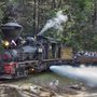 Historic Sugar Pine Railroad to reopen after being closed due to fire