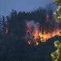 Incendio forestal al sur de Oregon ha consumido 1,650 acres