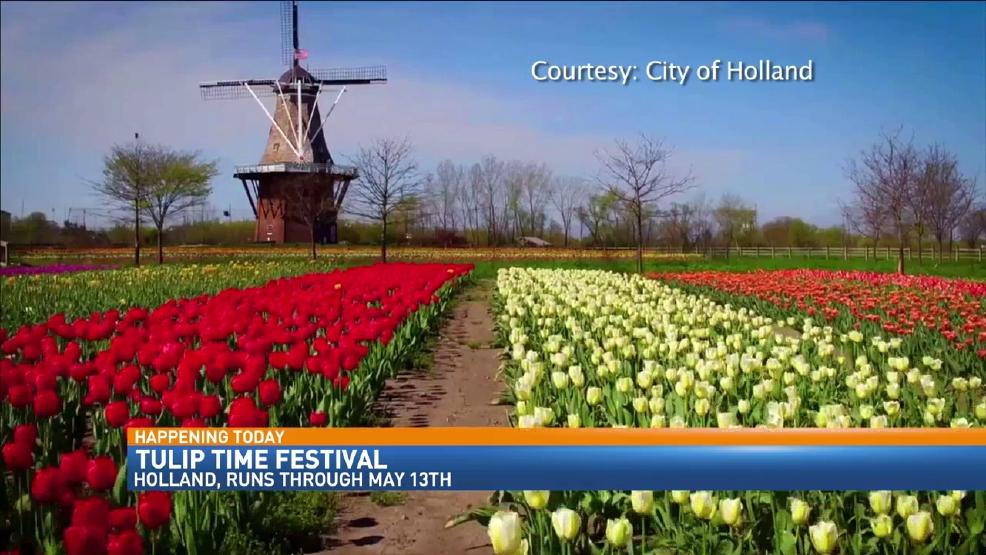 Tulip Time Festival Kicks Off In Holland WWMT - Holland tulip festival
