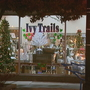 Vintage aluminum trees on display in Manitowoc