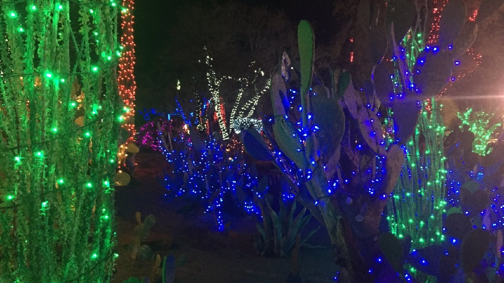 Kevin Janison Helps Kick Off Ethel M Chocolates Annual Holiday Cactus Lighting Kvcw