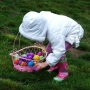 Your guide to area Easter egg hunts