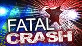 Michigan teenager dies after car hits utility pole