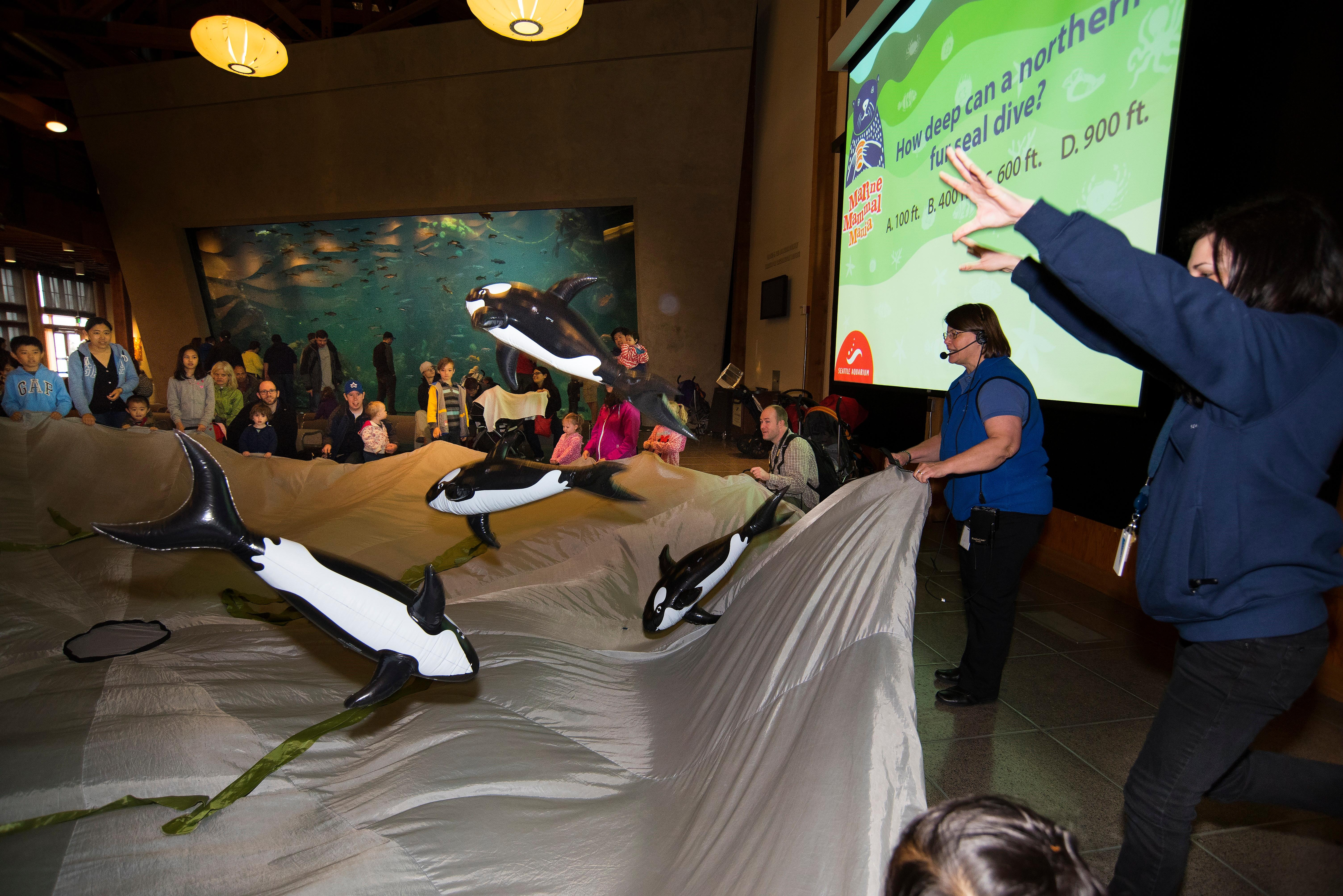 The Parachute game at Marine Mammal Mania is fun for kids and gives adults a chance to sit back and relax a little.