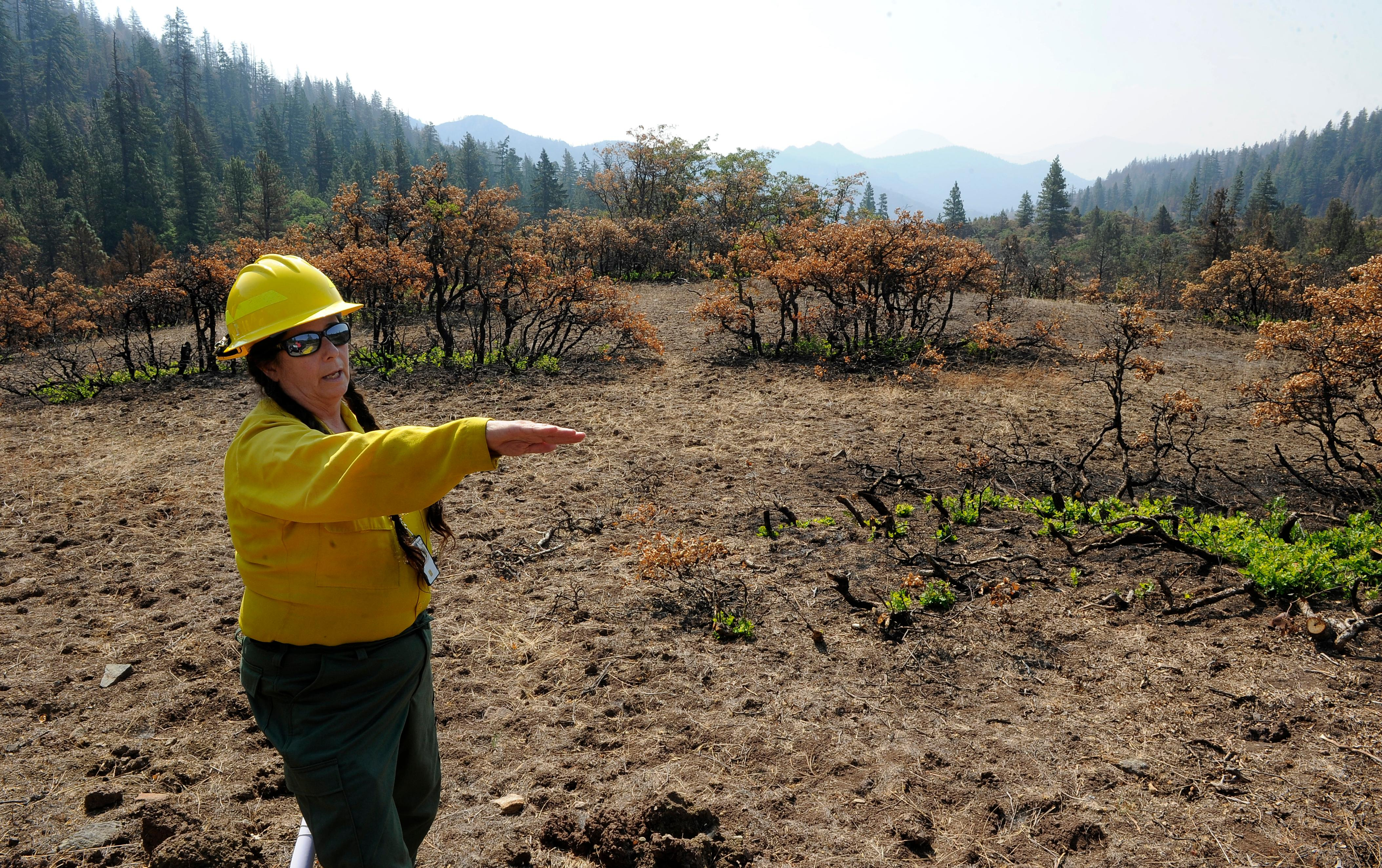 Andy Atkinson / Mail Tribune<br>Kristi Mastrofini stands near where the Klamathon fire crossed the border south of Pilot Rock where dozers were used for fire lines.