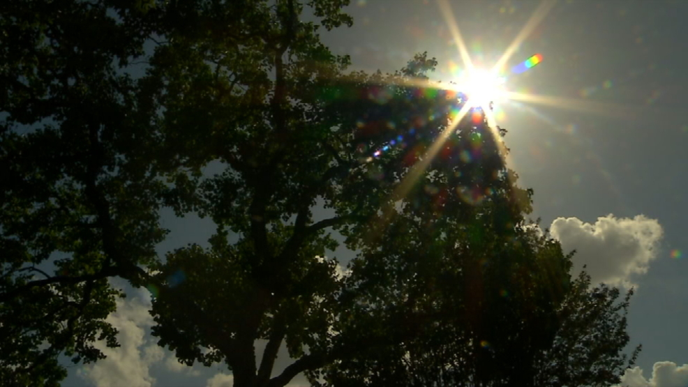 Governor Cuts Nearly 1 5 Million For Air Quality Planning