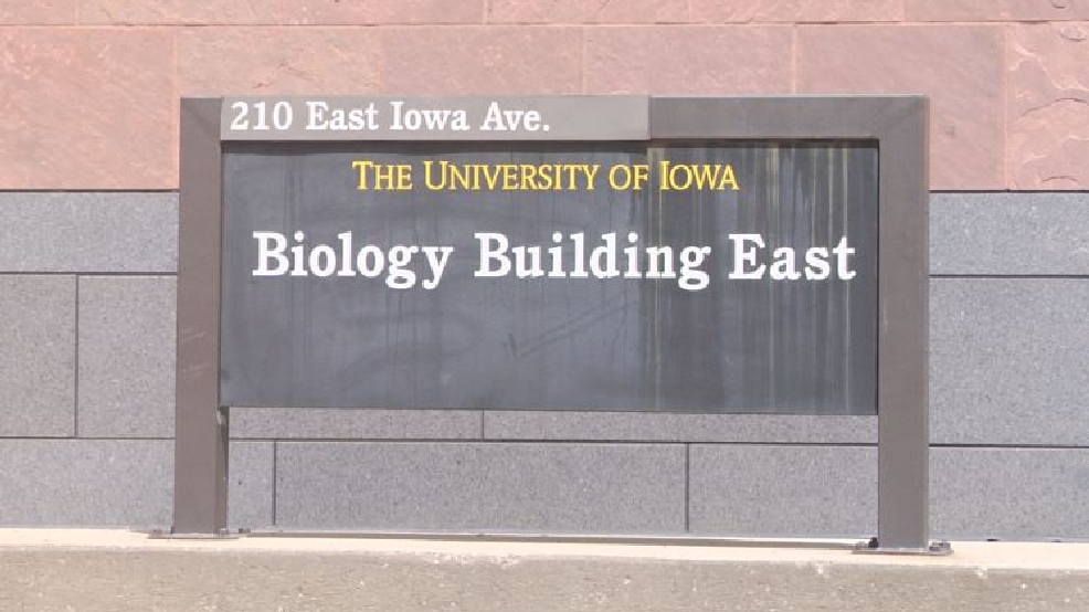 University of Iowa researcher's discovery could lead to cure for all