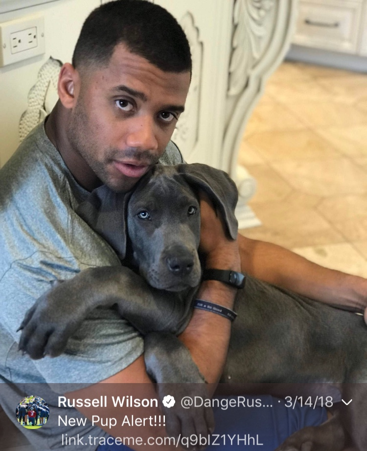 That one time Russ was a dog lover...Happy 30th, Russell! (Image: @dangerusswilson / twitter.com/dangerusswilson)