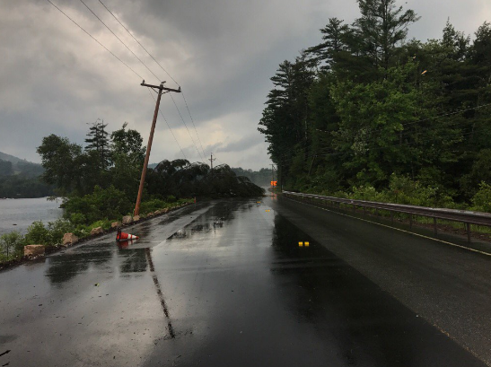 A portion of Route 302 is  closed after trees were torn down from today's storms. (Courtesy: Bridgton PD)