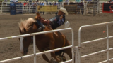 Gauge McBride preparing for rodeo nationals