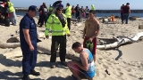 Off-duty Coast Guardsman helps save two boys pulled into the ocean