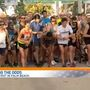 Turkey trots get Thanksgiving off to healthy start