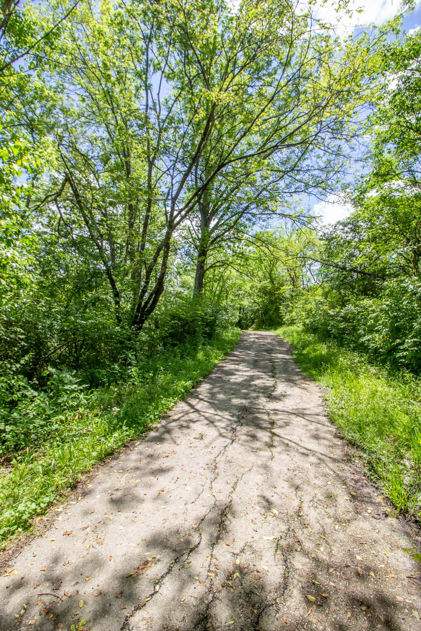 The Green Trail runs along the west side of the creek and is a much shadier pathway. It is .4 miles in length and ends at an intersection of Old Madison Pike and railroad tracks. / Image: Katie Robinson, Cincinnati Refined // Published: 6.14.20