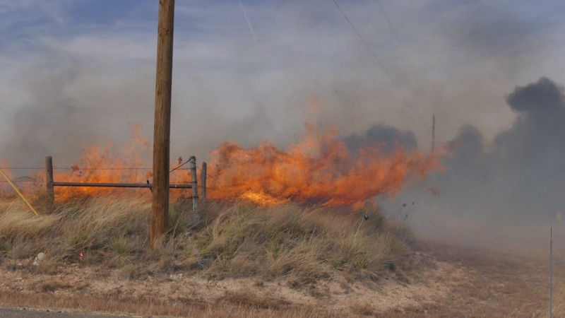 The National Forest Service says at least 200 acres have been burned in the Paloma Fire. (ABC 7 Amarillo)