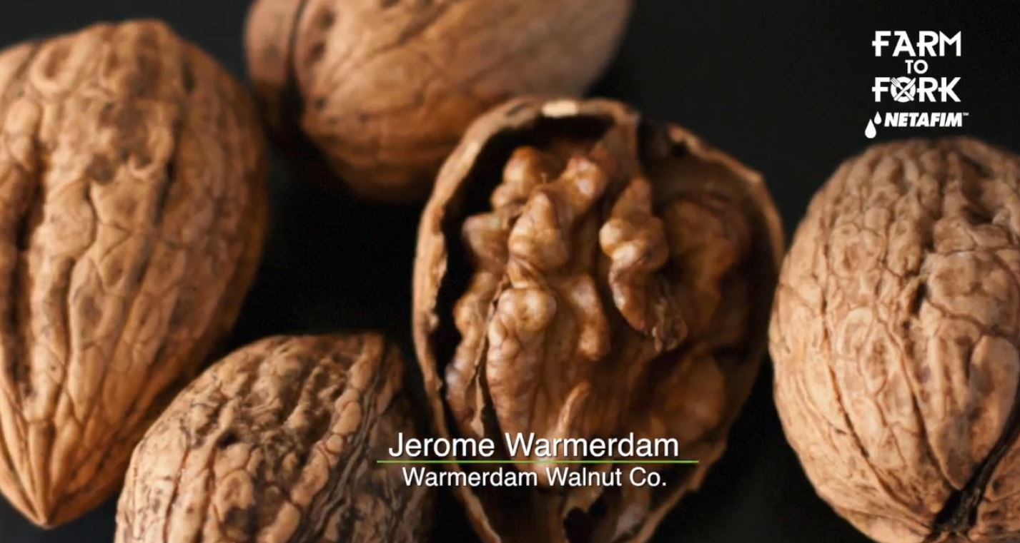 The trend has moved to walnuts with a lighter colored meat, so many varieties are planted to keep up with changes in the market.<p></p>
