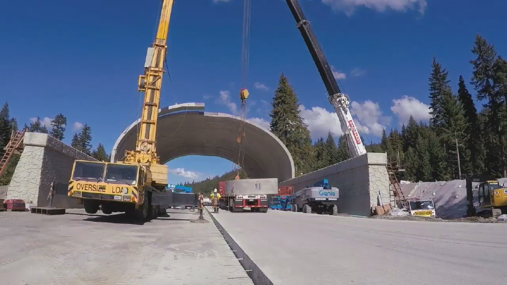 Construction underway on wildlife crossing over I-90 near ...