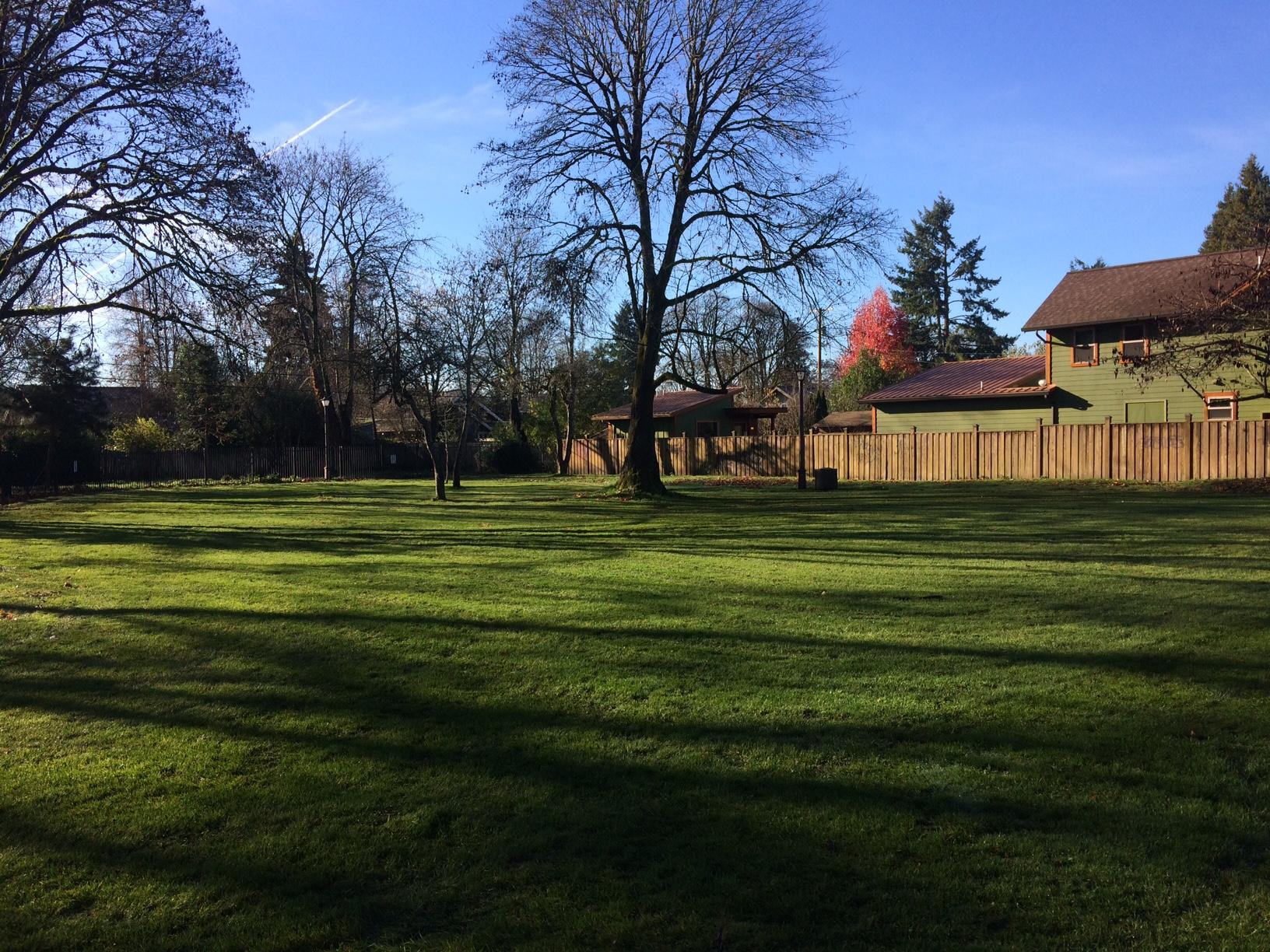 The City of Eugene may try to replicate improvements in the downtown Park Blocks at a Whiteaker neighborhood park long plagued by illegal camping and drug use.Up for consideration: a $350,000 to $500,000 investment in Scobert Gardens Park. (SBG)