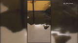 Cold snap blamed for burst pipe at Wheaton High School, smelly, black water causes damage