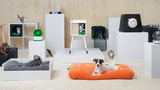 Ikea unveils pet furniture line for your furry friends