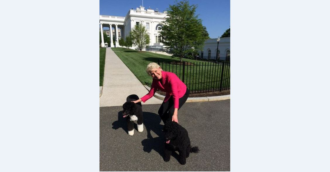 """Just got to meet the 'first dogs', Bo & Sonny at the @WhiteHouse. So cute!! #NoBigDeal"" (@Cammy_Dierking)"