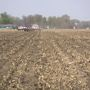 Local farmers continue to gain knowledge of cover crops