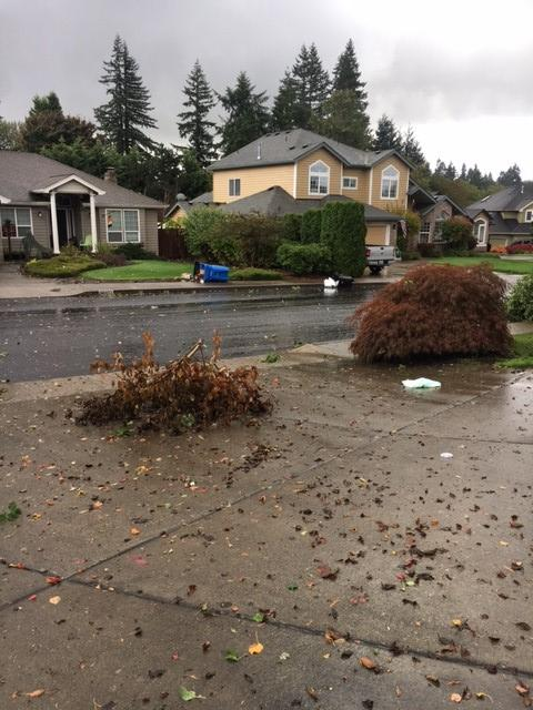 NWS confirmed there was an EF-0 north of Vancouver Thursday, Oct. 12, 2017. Photo courtesy Kari Weller