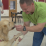 Prison partnership provides training for dogs, therapy for inmates