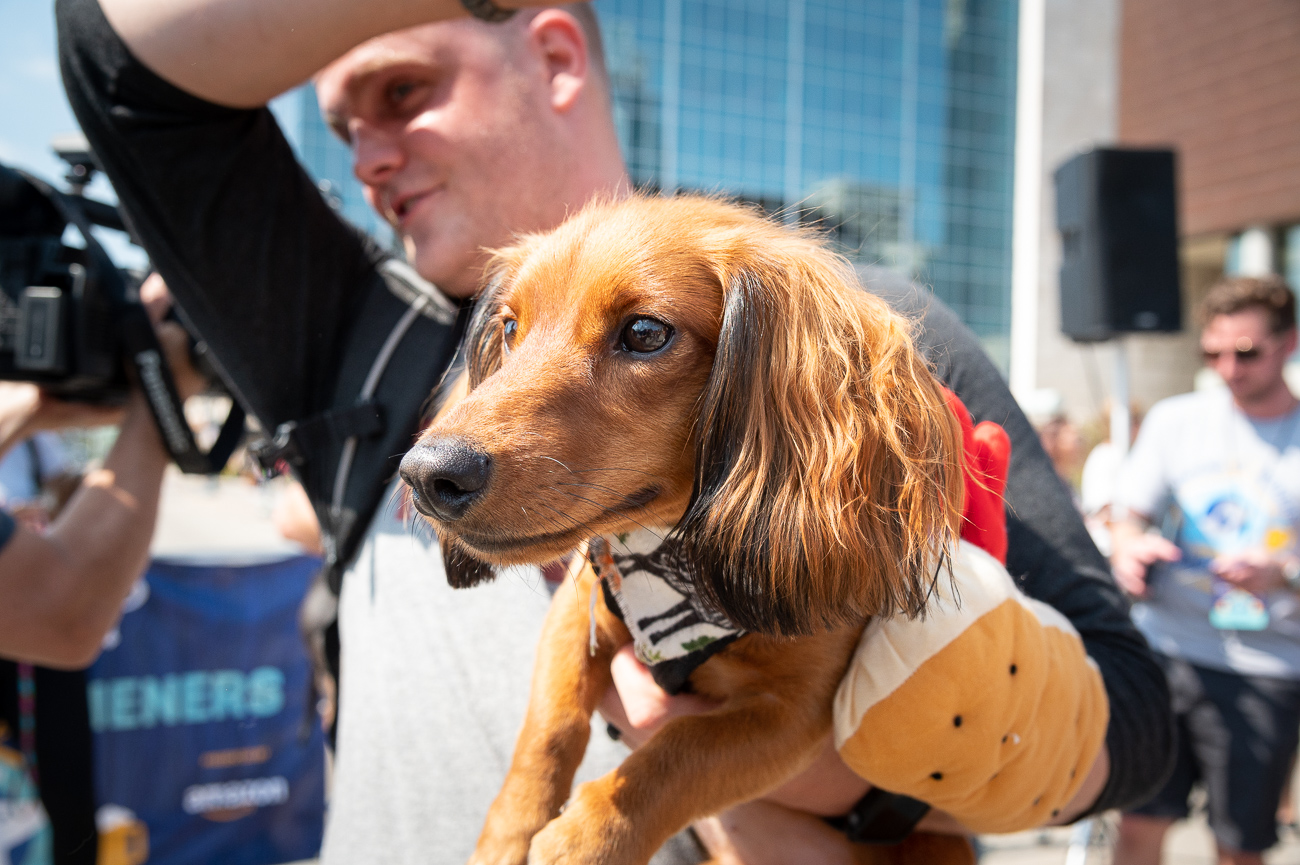 1st place was ultimately earned by Maple, a fluffy-eared red doxie. Owners Joey, Jake, and Lorene Sander were there to celebrate with her. / Image: Phil Armstrong, Cincinnati Refined // Published: 9.19.19