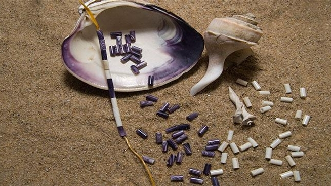 Wampum: The Original Currency