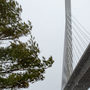 Search underway after vehicle was found abandoned on Penobscot Narrows Bridge