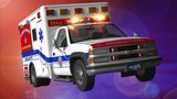Woman severely injured in dog attack, official says