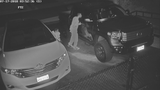 Caught on camera: Thieves target Alexandria truck
