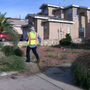 How long before your weeds turn into fines in El Paso?