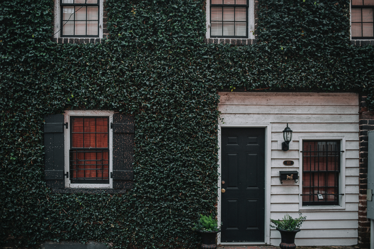 One of the best activities in Savannah is simply walking around the Historic District to admire the architecture and Southern charm of the city. / Image: Seth Doyle on Unsplash // Published: 3.8.19