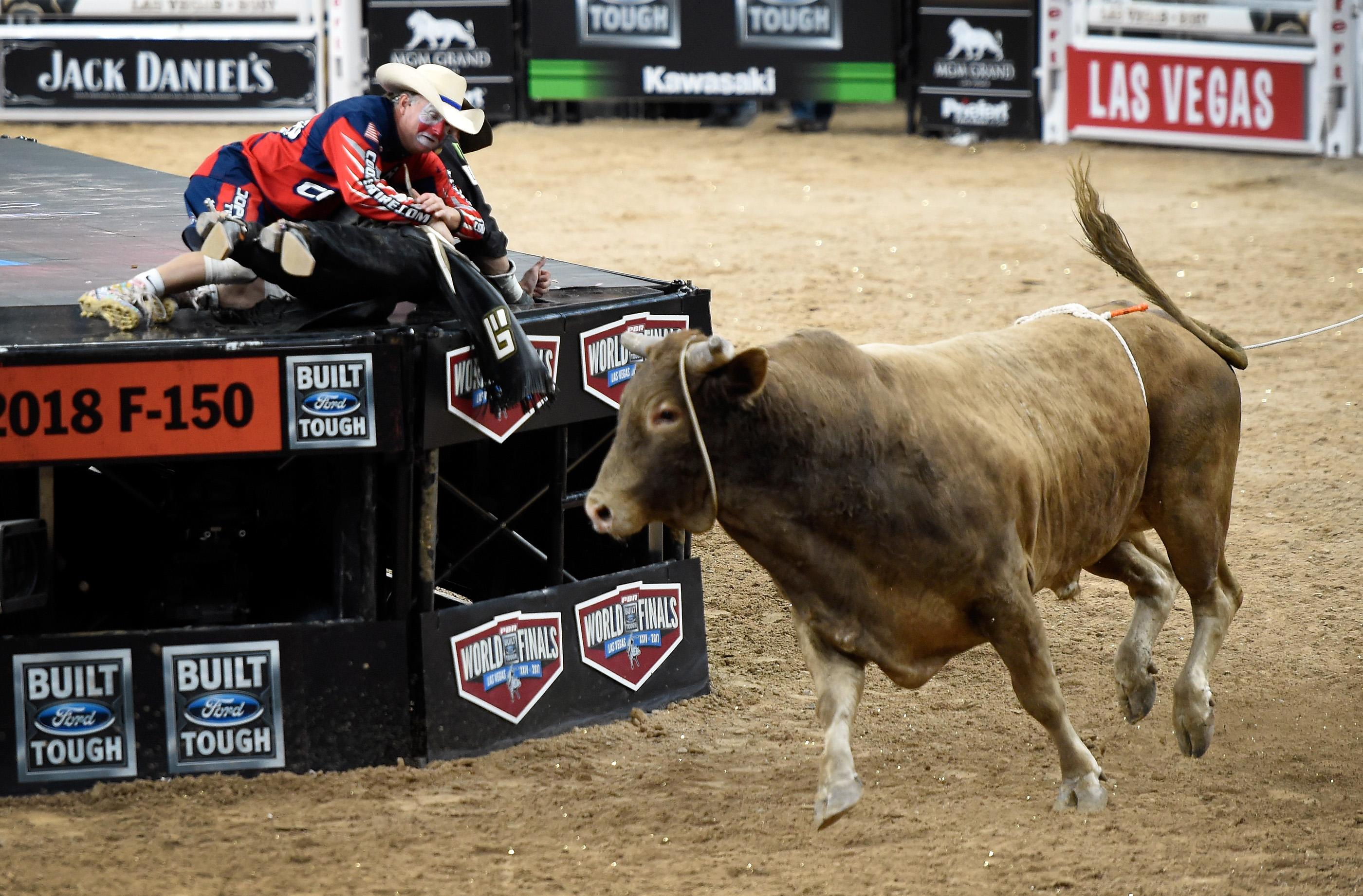 Bull fighter Flint Rasmussen pulls bull rider Guiherme Marchi on to the stage as Hedoo still runs free after his ride during the PBR World Finals at T-Mobile Arena Sunday, Nov. 5, 2017, in Las Vegas. [David Becker/Las Vegas News Bureau]