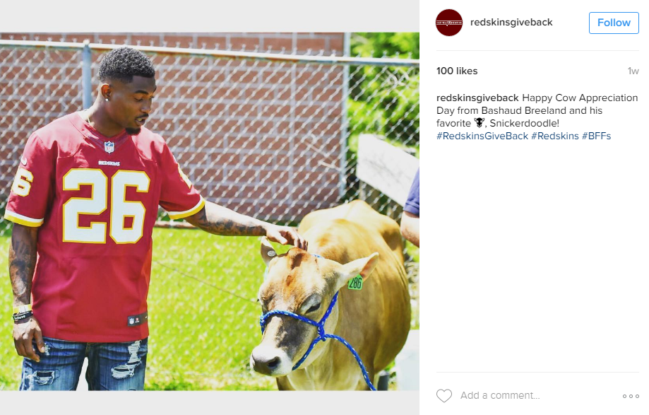 We have to admit we have no idea what is going on in this picture but apparently Breeland made friends with a cow named snickerdoodle. Good enough for us! (Image: @Redskins Instagram)