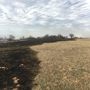 Grass fire that forced evacuations in Coweta now under control